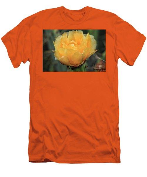 Cactus Flower 2016   Men's T-Shirt (Slim Fit) by Toma Caul