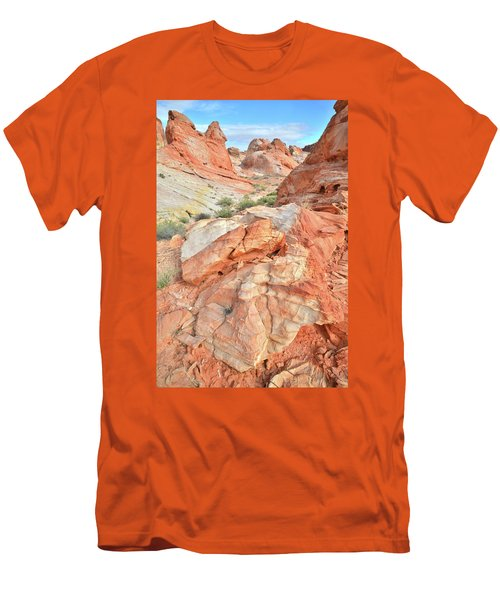 Canyon Color In Valley Of Fire Men's T-Shirt (Slim Fit) by Ray Mathis
