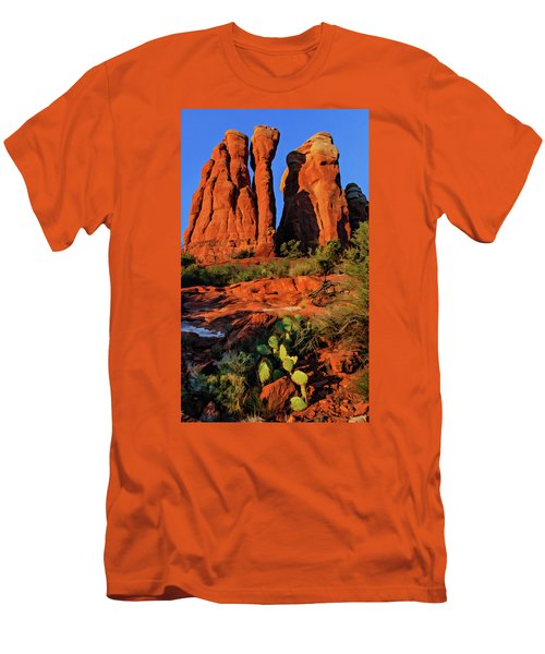 Cathedral 06-074 Men's T-Shirt (Slim Fit) by Scott McAllister
