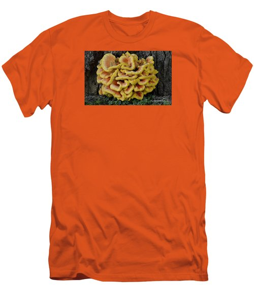 Chicken Of The Woods Men's T-Shirt (Slim Fit) by Randy Bodkins