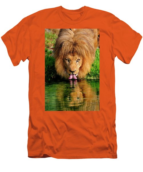 Christmas Lion Men's T-Shirt (Athletic Fit)