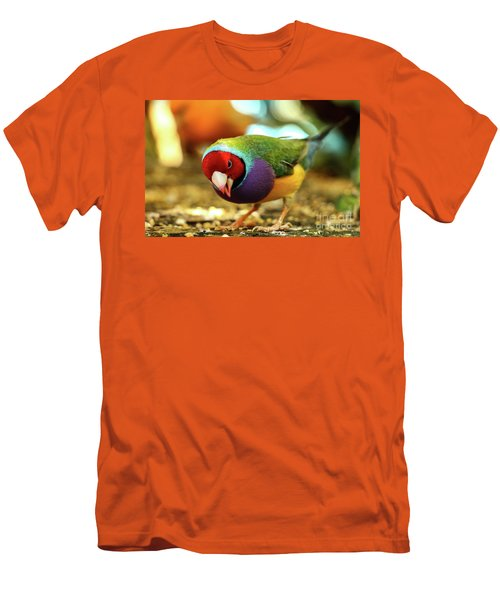 Colorful Bird Men's T-Shirt (Athletic Fit)