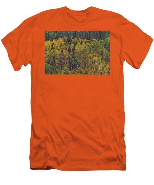 Colors Of Denali Men's T-Shirt (Athletic Fit)