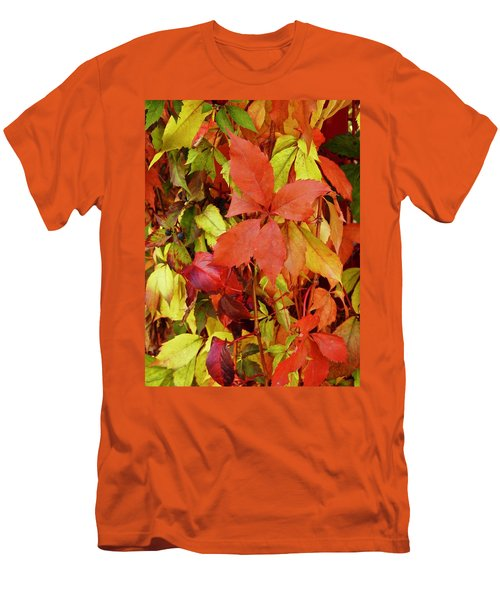 Colours Of Autumn Men's T-Shirt (Slim Fit) by Brian Chase