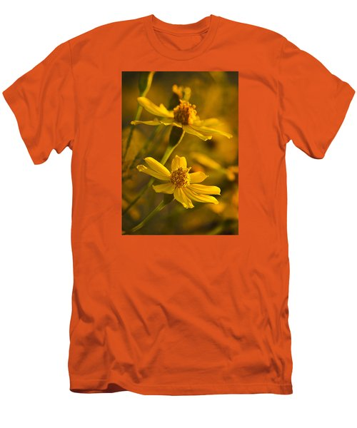 Coreopsis Verticillata 3 Men's T-Shirt (Athletic Fit)
