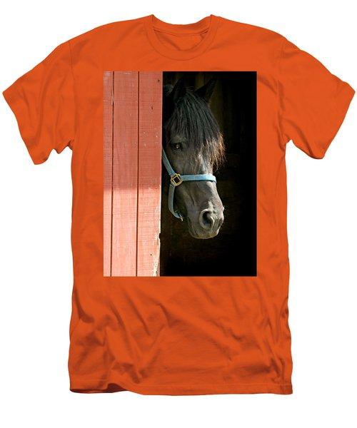 Coy Boy Men's T-Shirt (Athletic Fit)