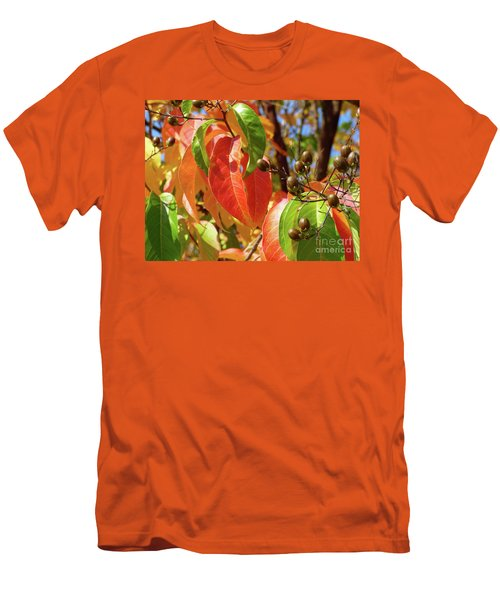 Crepe Myrtle Autumn Color Men's T-Shirt (Athletic Fit)