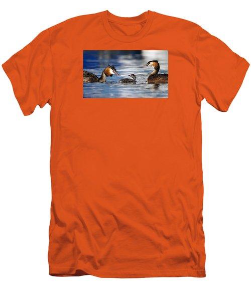 Crested Grebe, Podiceps Cristatus, Ducks Family Men's T-Shirt (Slim Fit) by Elenarts - Elena Duvernay photo