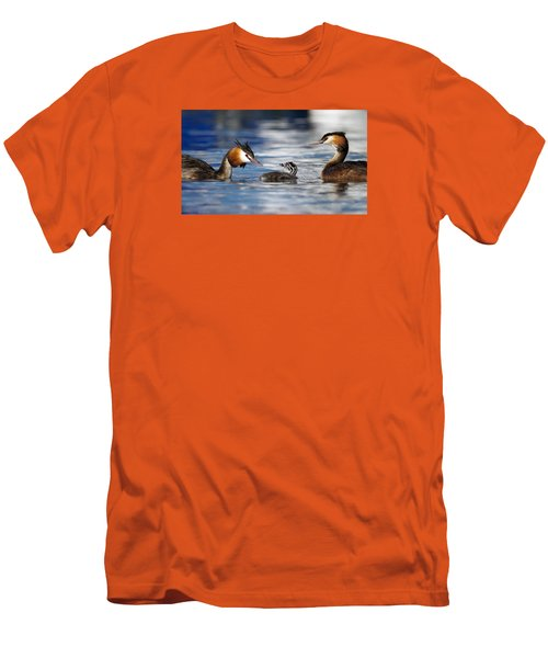 Crested Grebe, Podiceps Cristatus, Ducks Family Men's T-Shirt (Athletic Fit)