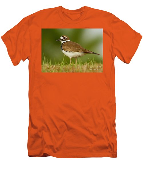Men's T-Shirt (Slim Fit) featuring the photograph Curious Killdeer by Myrna Bradshaw