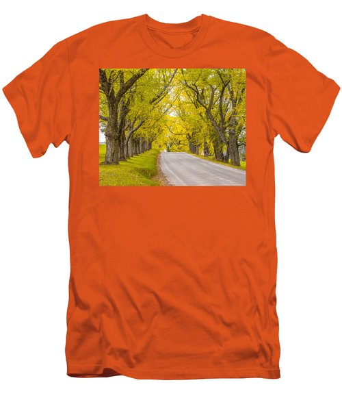 Darling Hill Autumn Men's T-Shirt (Athletic Fit)