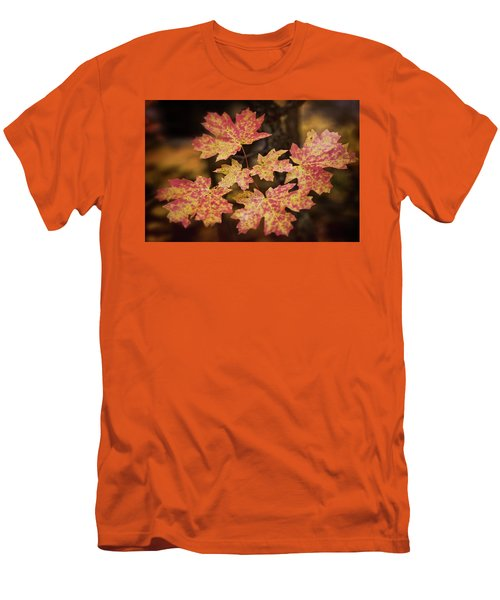 Men's T-Shirt (Athletic Fit) featuring the photograph Dreams Of Autumn  by Saija Lehtonen