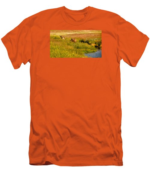 Men's T-Shirt (Slim Fit) featuring the photograph Elk In The Wild Flowers by Cathy Donohoue