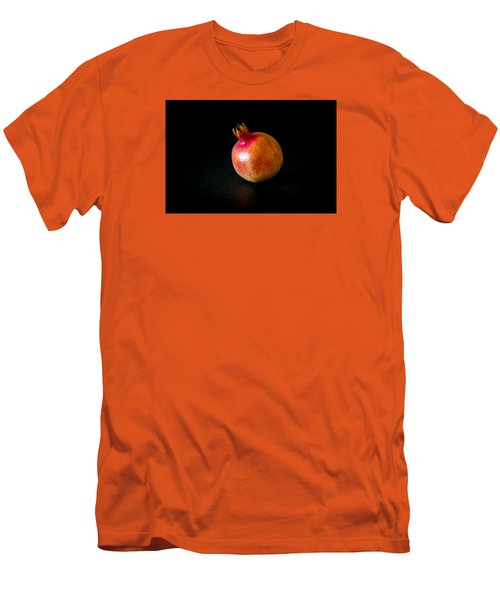 Fall Fruits Men's T-Shirt (Athletic Fit)