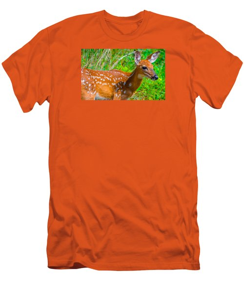 Fawn 4 Men's T-Shirt (Slim Fit) by Brian Stevens