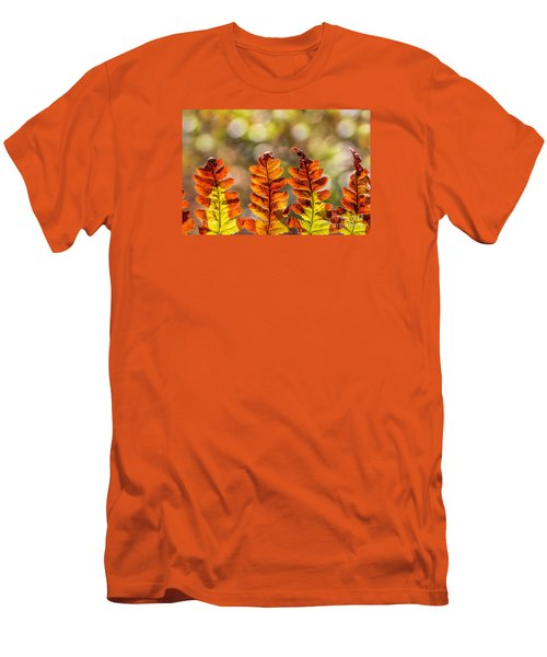 Ferns And Bokeh Forest Light Men's T-Shirt (Athletic Fit)
