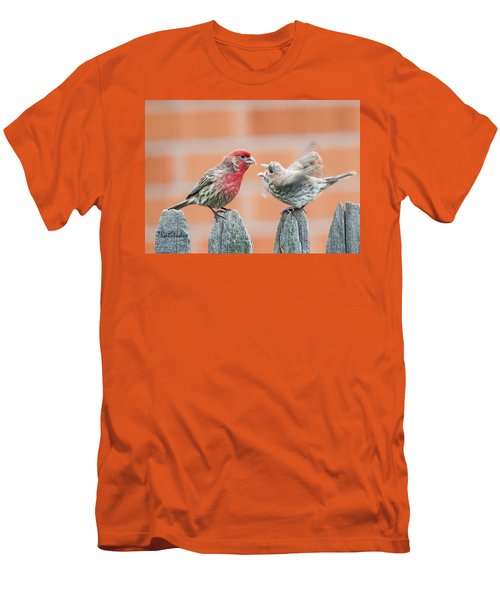 Feuding Finches Men's T-Shirt (Athletic Fit)