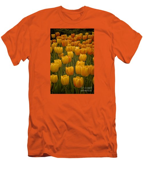 Fine Lines In Yellow Tulips Men's T-Shirt (Slim Fit) by Michael Flood