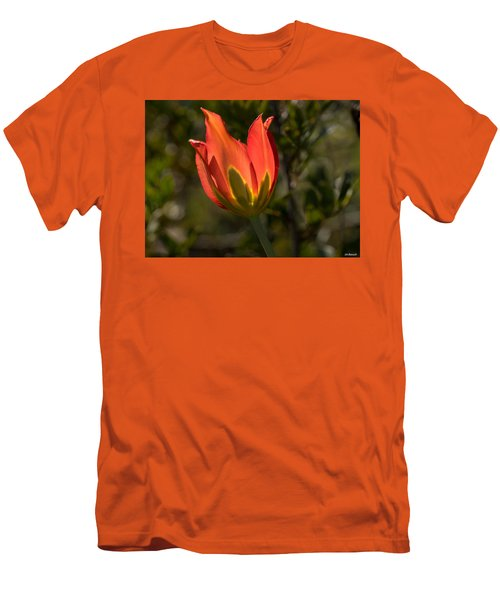 Flaming Beauyy Men's T-Shirt (Slim Fit) by Uri Baruch