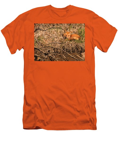 Fox  Men's T-Shirt (Slim Fit) by Edward Peterson