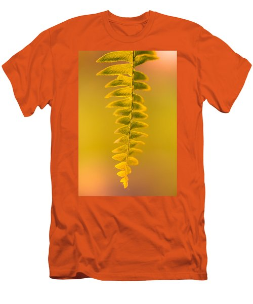 Golden Fern Men's T-Shirt (Athletic Fit)
