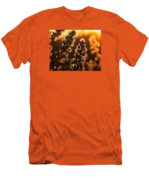 Goldenrod At Sunset Men's T-Shirt (Athletic Fit)