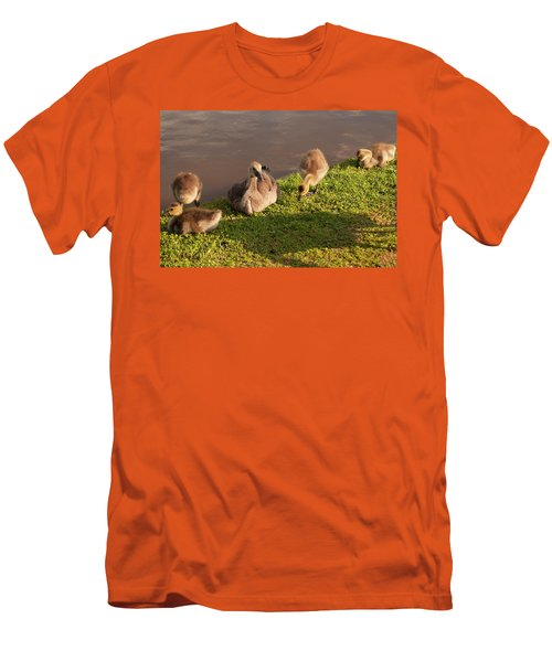 Men's T-Shirt (Slim Fit) featuring the photograph Goslings Basking In The Sunset by Chris Flees