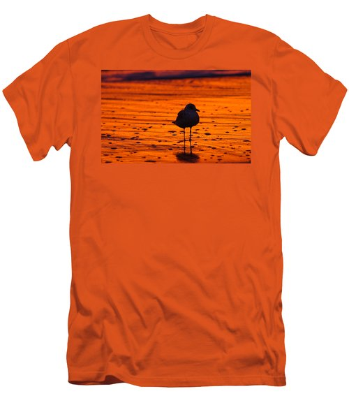 Gull Caught At Sunrise Men's T-Shirt (Slim Fit) by Allan Levin