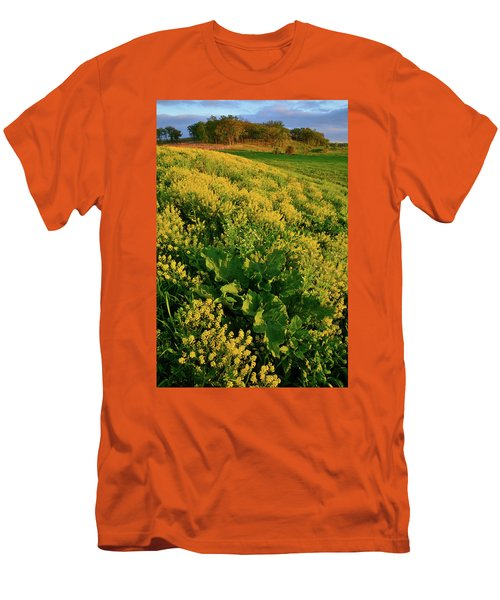 Hackmatack National Wildlife Refuge Wildflowers Men's T-Shirt (Athletic Fit)