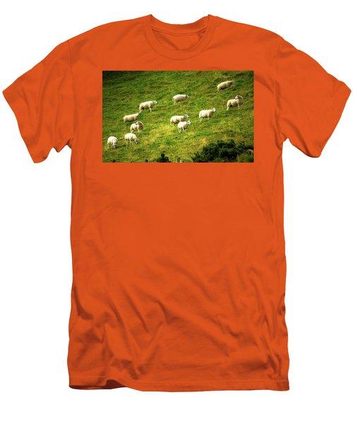 Hillside Pasture Men's T-Shirt (Athletic Fit)