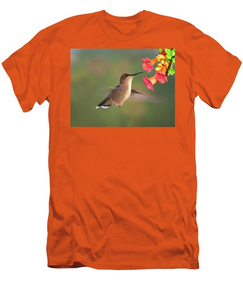Hummer With Trumpet Vine Flowers Men's T-Shirt (Slim Fit) by Judy Johnson
