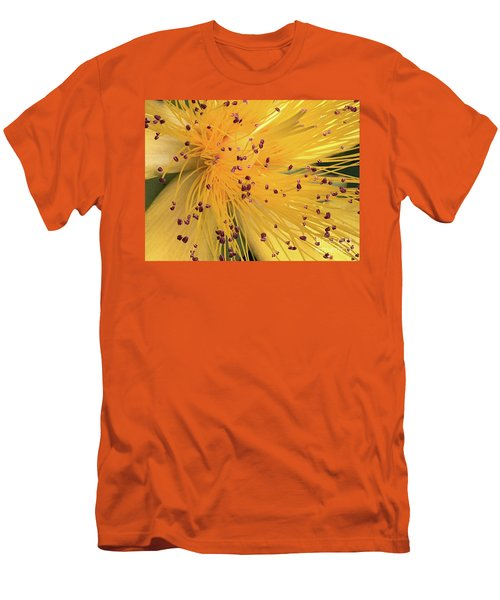 Inside A Flower - Favorite Of The Bees Men's T-Shirt (Athletic Fit)
