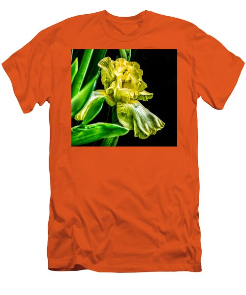 Iris In Bloom Men's T-Shirt (Slim Fit)