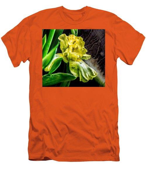 Iris In Bloom Two Men's T-Shirt (Slim Fit)