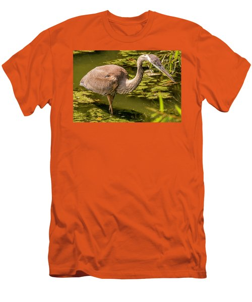 Juvenile Great Blue Heron Men's T-Shirt (Athletic Fit)