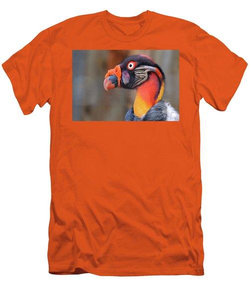 King Vulture Men's T-Shirt (Slim Fit) by Paul Marto