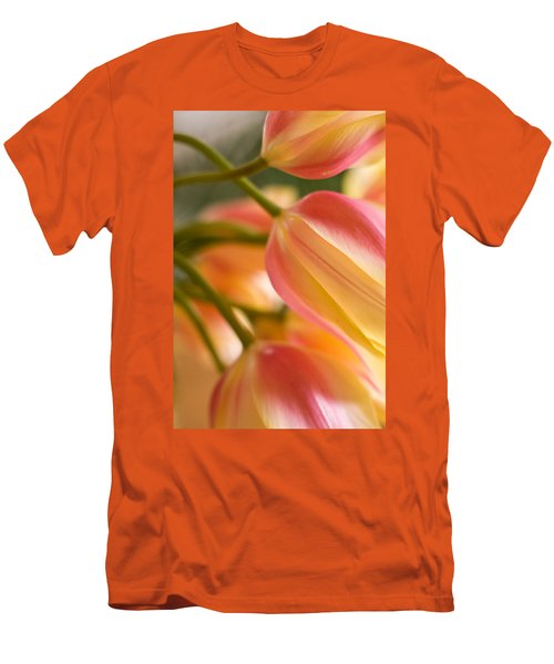 Labrynth Of Spring Men's T-Shirt (Athletic Fit)