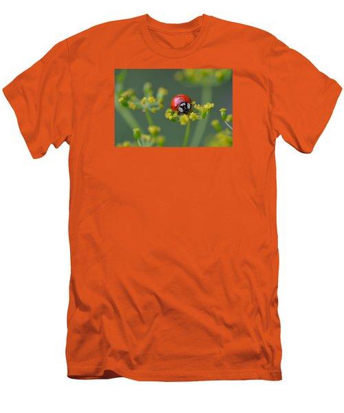 Ladybug In Red Men's T-Shirt (Slim Fit) by Janet Rockburn