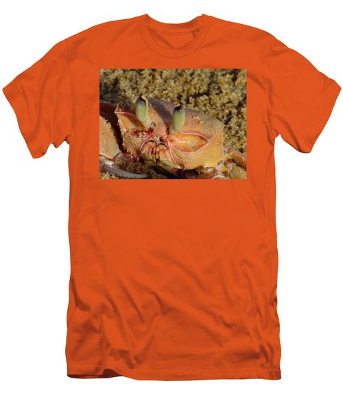 Lamu Island - Crab - Close Up 1 Men's T-Shirt (Slim Fit) by Exploramum Exploramum