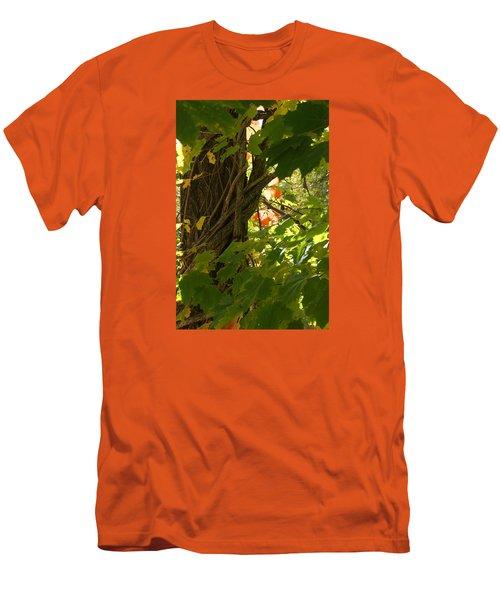Leaf Peeping In Red Men's T-Shirt (Slim Fit) by Margie Avellino