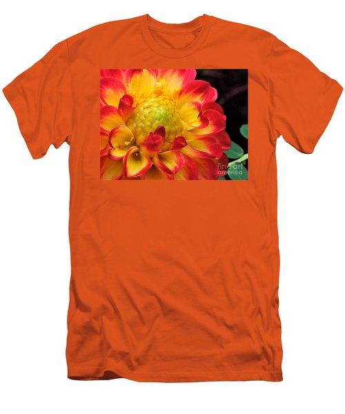 Macro Dahlia Men's T-Shirt (Athletic Fit)