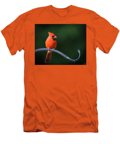 Male Cardinal At The Feeder Men's T-Shirt (Athletic Fit)