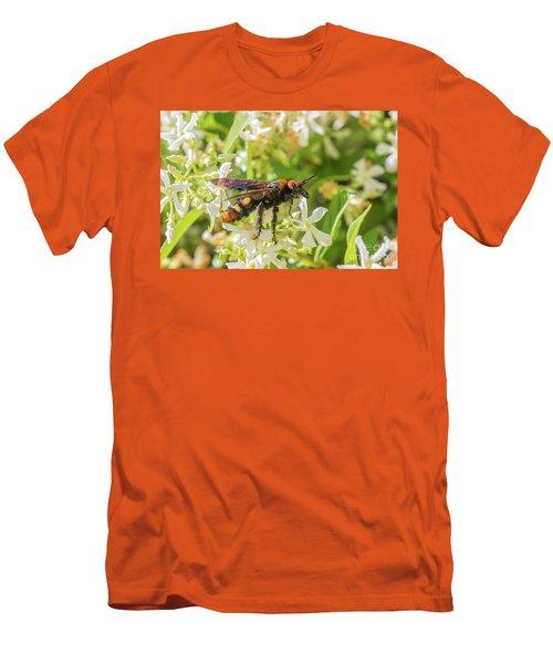 Men's T-Shirt (Slim Fit) featuring the photograph Mammoth Wasp Megascolia Maculata Maculata by Jivko Nakev