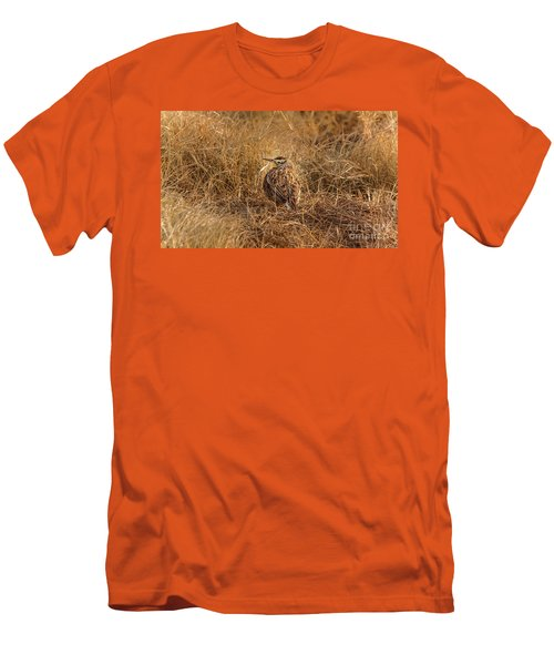 Meadowlark Hiding In Grass Men's T-Shirt (Slim Fit) by Robert Frederick