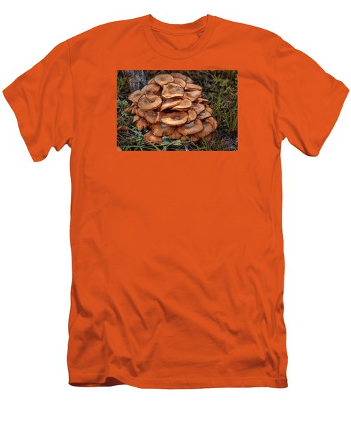Mushroom Bouquet Men's T-Shirt (Slim Fit) by Rick Friedle