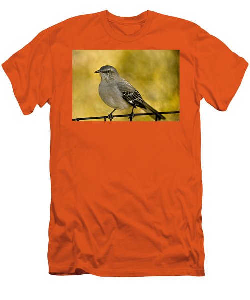 Northern Mockingbird Men's T-Shirt (Slim Fit) by Chris Lord