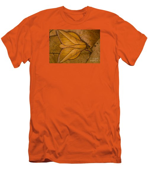 Oiticella Convergens Moth Men's T-Shirt (Slim Fit) by Gabor Pozsgai