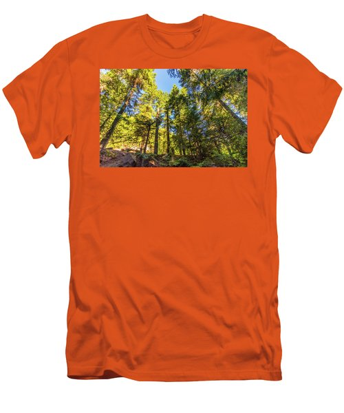 Men's T-Shirt (Athletic Fit) featuring the photograph Oregon Trees by Jonny D
