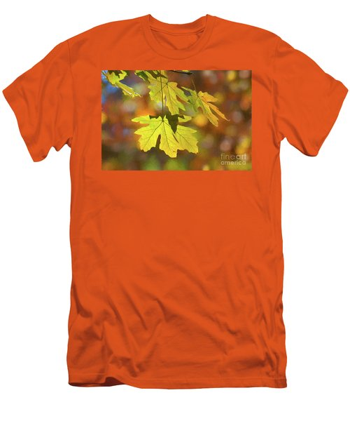 Painted Golden Leaves Men's T-Shirt (Athletic Fit)