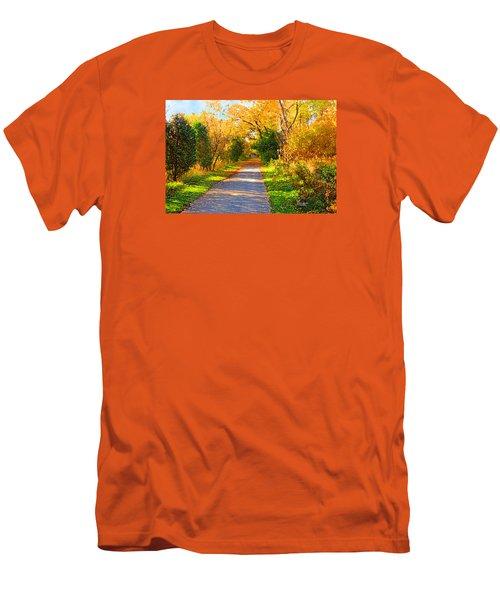 Park Path Men's T-Shirt (Athletic Fit)